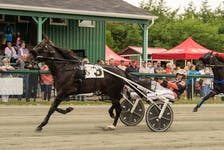 Rotten Ronnie and driver Redmond Doucet cruise under the line in their track record 1:53.3 mile over Woodmere Stealdeal on Saturday afternoon at Northside Downs. PHOTO/TANYA ROMEO.