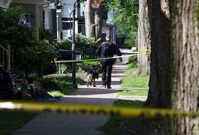 July 2, 2020—A Halifax Regional Police officer and dog look for clues following a triple shooting on Cork Street late Canada Day evening. One person died dead and two other victims, a man and woman, were injured in the incident.