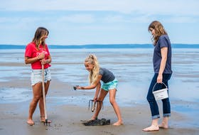 In Belliveau Cove, the Rendez-vous de la Baie Visitor Centre coordinates a clamdigging experience with a local provider to encourage visitors to participate in this age-old art.  Charlene de la Cruz photo
