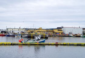 The Ocean Choice International plant in Bonavista processes snow crab and pelagics.