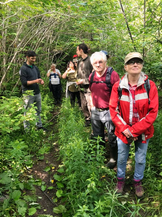 Kevin Barnes (second from right) recently participated in foraging session as part of the Western Environment Centre's wild edibles series.
