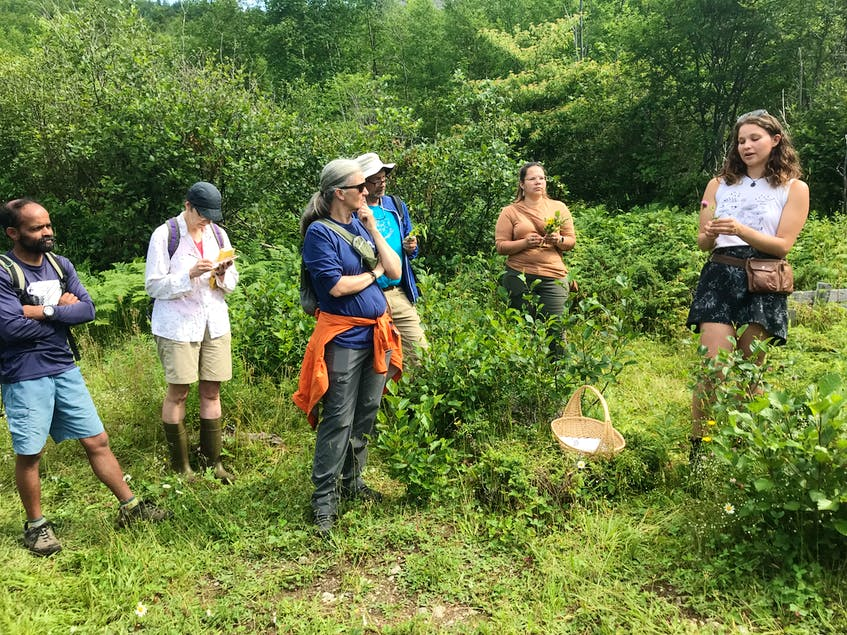 Katherine Flores (far right) recently led a group on a tea walk in the meadow as part of the Western Environment Centre's wild edibles series.