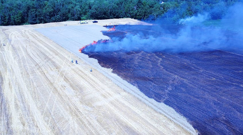 Kentville's fire chief estimates at least three to four acres of unharvested wheat was lost after a fire broke out July 29 while farmers were harvesting the field. - Adrian Johnstone