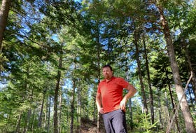 Greg Watson, manager of the North Nova Forest Owners Co-op, in a forest stand in Wentworth that has received two cuts in line with the province's plan for ecologically managed crown lands.