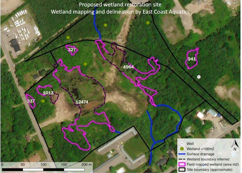 Proposed wetland restoration site.