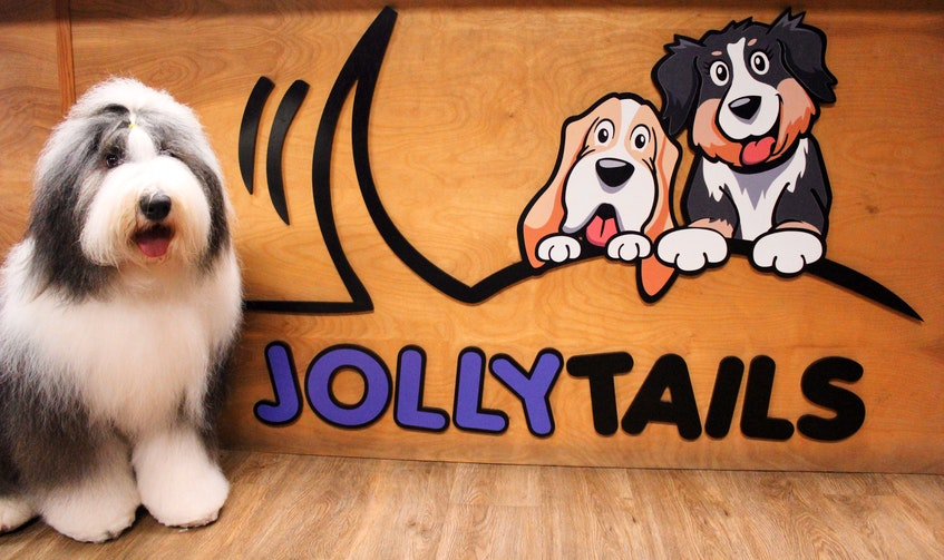 One thing pet parents should be aware of when looking for a doggie daycare is that they are unregulated in Nova Scotia, says Jollytails owner Tristan Flynn. He encourages owners to do their homework and choose the right place for their pet. - Contributed