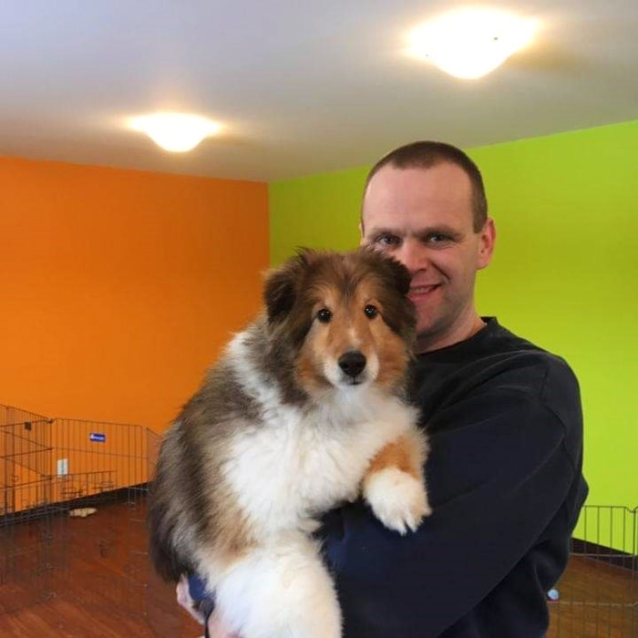 Jonathan Noseworthy cuddles his dog, Kosmo, a miniature Shetland Sheepdog. Before Kosmo passed away in 2019, he was a regular visitor at Noseworthy's K9 Dog Daycare in Flatrock, NL. - Contributed