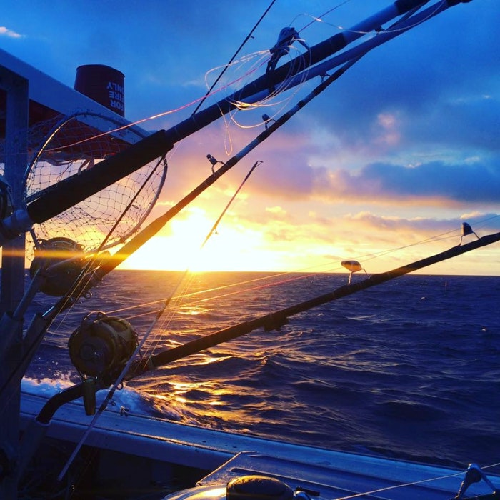 While keeping your eyes peeled for whales during a tour with PEI Sea Adventures, you can also fish for mackerel, herring, cod, and halibut. -  PEI Sea Adventures photo - Saltwire network