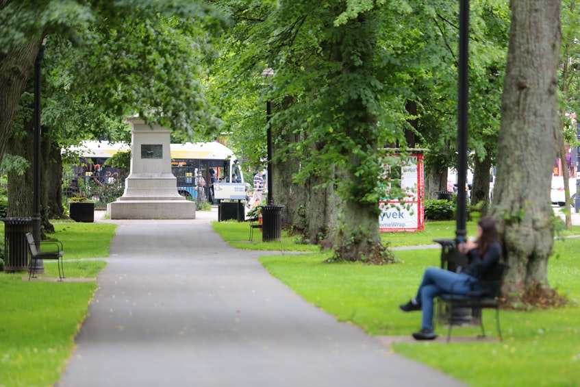 A temporary shelter set up by Halifax Mutual Aid in Victoria Park in Halifax, seen on Tuesday, July 7, 2021, is one of three that HRM has removed. - Eric Wynne / File