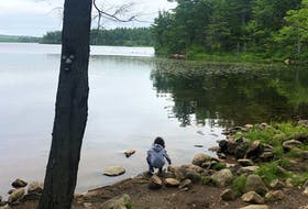 There are several places to access Second Lake in Sackville, N.S. while hiking Second Lake Trail. It's a great opportunity to stop and enjoy the scenery or even swim.