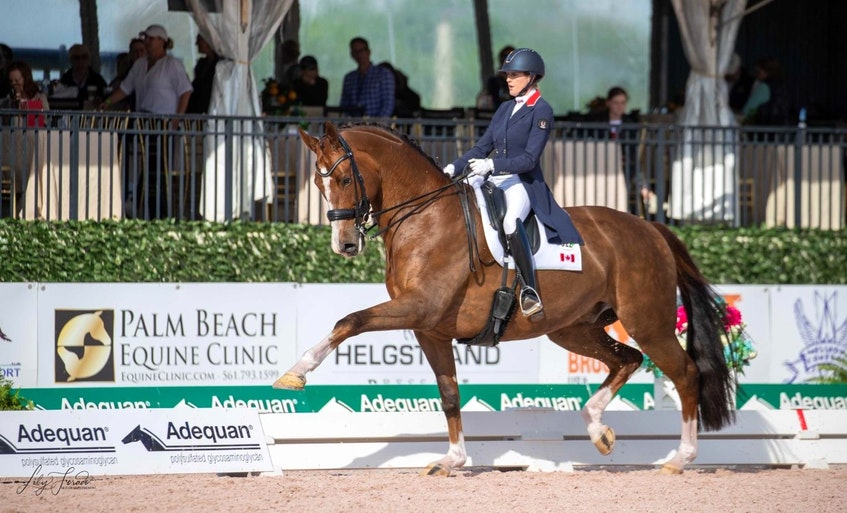 Brittany Fraser-Beaulieu, from New Glasgow, has been nominated for the Canadian Olympic dressage team  - Contributed