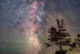 """While you were sleeping, Barry Burgess was out stargazing and taking some incredible photos. Barry caught a meteor above the tree while photographing the Milky Way on the Aspotogan Shore in the morning twilight last Tuesday.    He said: """"I couldn't help but think of the Perry Como song 'Catch A Falling Star' when looking at this image.    What a photo; thanks again, Barry!"""