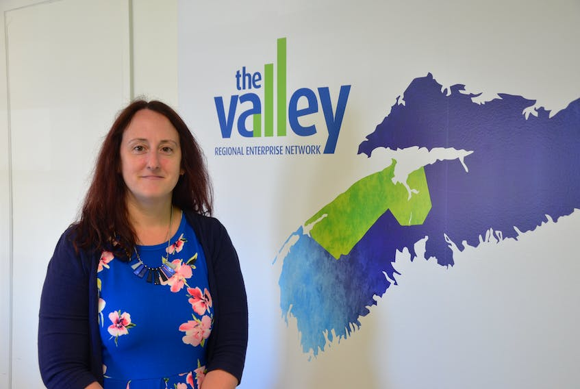Valley Regional Enterprise Network (REN) CEO Jennifer Tufts says a consultant that will be hired to develop a strategic regional tourism plan for the Annapolis Valley would begin engaging industry stakeholders this fall. KIRK STARRATT