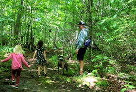 Hiking the Jodrey and Woodland trails at Blomidon Provincial Hike takes time and stamina, but it's do-able with kids, says Heather Fegan, who recently hiked the trails with her family and friends while camping.