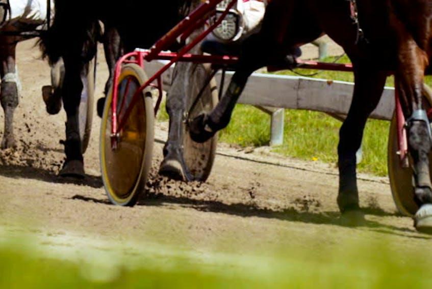 Harness Racing.