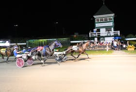 The Gilles Barrieau-driven Ideal Perception, 3, hits the wire first in the $12,500 Gold Cup and Saucer Trial 2 at ed Shores Racetrack and Casino at the Charlottetown Driving Park on Aug. 16. Rock Lights, front, driven by Jason Hughes, finished second, and Racemup came third to qualify for the 62nd edition of The Guardian Gold Cup and Saucer on Aug. 21. Gail MacDonald Photo