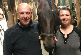 Colin Johnson, left, and Debbie Element pose with National Debt at their Charlottetown Driving Park stable. National Debt finished fourth in The Guardian Gold Cup and Saucer Trial 3 on Aug. 16 and did not qualify for the final on Aug. 21. Photo courtesy of Nicholas Oakes