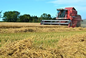 A combine harvester like this one was destroyed after a fire broke out in a crop field in Emerald on Monday, Aug. 16. Contributed