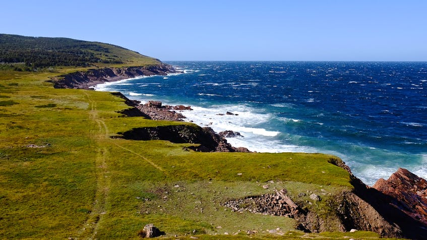 This is the view from Cape St. Lawrence. The Seawall Trail would largely be bound by the Pollett's Cove Aspy Fault Wilderness Area. CONTRIBUTED/SEAWALL TRAIL SOCIETY