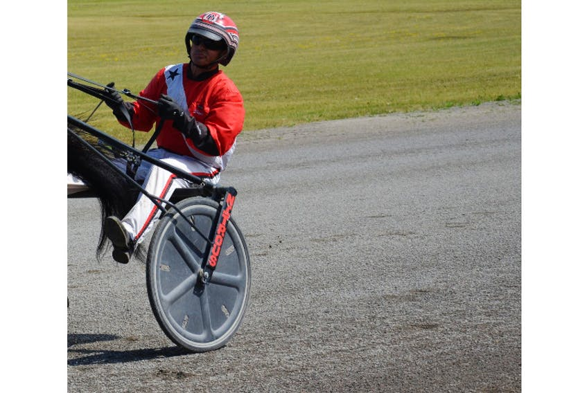 David Dowling trains and drives Tobins Brownie. The three-year-old filly is looking for another impressive performance during Gold Cup Week harness racing at Red Shores Racetrack and Casino at the Charlottetown Driving Park on Aug. 20.