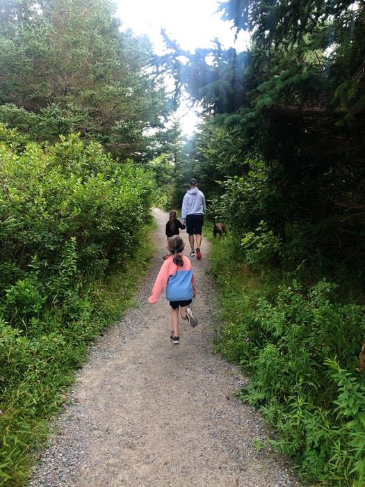 The trail skirts in and out of the woods taking you past all three of the beaches at Crystal Crescent. - Heather Fegan