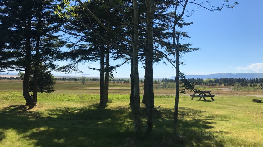 Wake up to fresh air and clear skies at ADDA Fundy Tides Campground. - Photo Contributed.