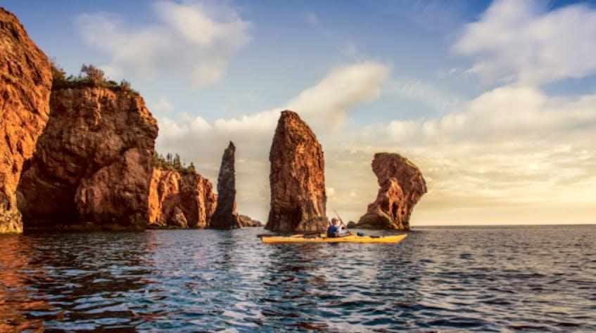 With NovaShore Adventures, you can paddle through  arches and sea stacks. - Photo Courtesy Tourism Nova Scotia / Scott Munn,