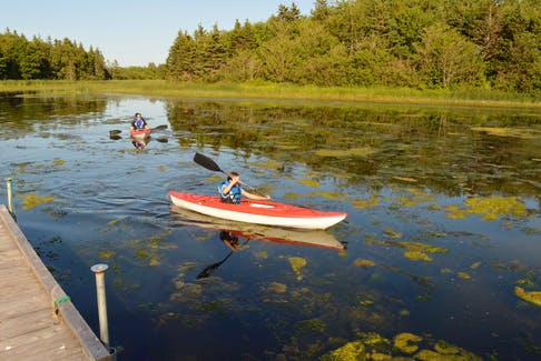 Annabelle Chaisson, 9, right, paddles to shore with Katie Pitre close behind at the Roseville Pond Natural Area Aug. 9.