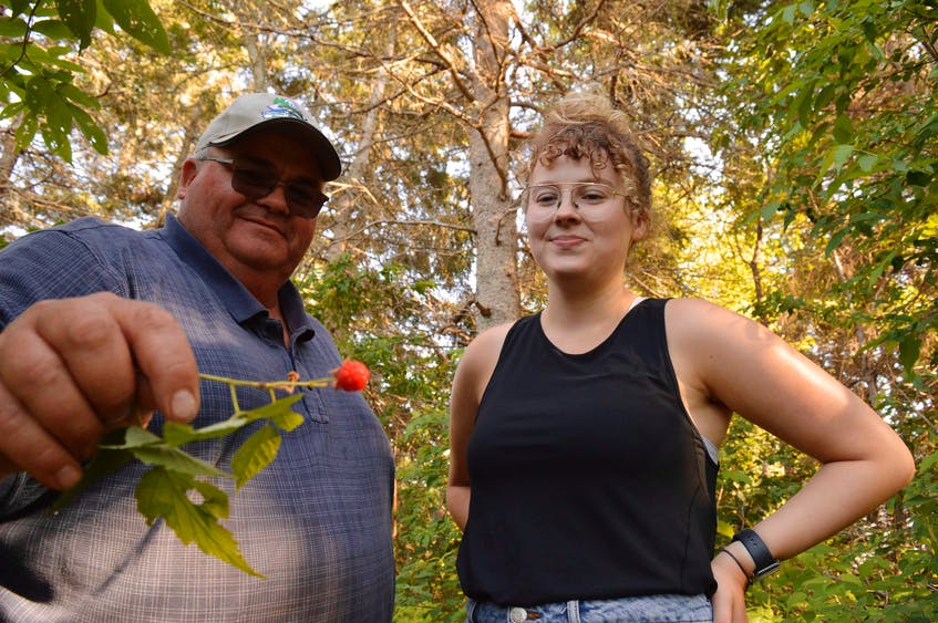 Roseville-Miminegash Watersheds Inc. co-ordinator Danny Murphy and daughter, Mariah, enjoy some raspberries found on the hiking trail at Roseville Pond Natural Area. - Alison Jenkins