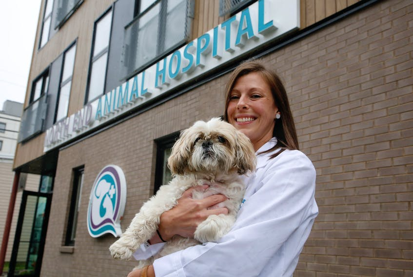 Dr. Kellie Haggett holds Juno, a patient at the newly opened North End Animal Hospital in Halifax. TIM KROCHAK PHOTO
