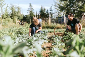 Kim MacPherson and her husband, Mark Pehlke, operate Lupin Dining & Pantry in Musquodoboit Harbour. Chelle Wootten Photography