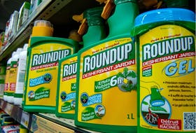 Health Canada has paused a proposal to increase the amount of Glyphosate, commonly known as Roundup, allowed on food.