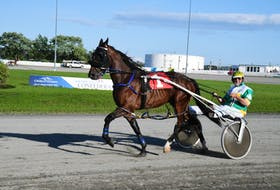 Jimmy Whelan parades a horse at Red Shores Racetrack and Casino at the Charlottetown Driving Park on July 29. Whelan, a major player in harness racing, is back home in P.E.I. for the upcoming Old Home Week meet in Charlottetown.