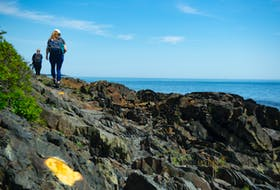 Jaimee Dupont Morozoff, Nova Scotia director for the Nature Conservancy of Canada, hikes the Gaff Point trail on Tuesday, July 13, 2021. Ryan Taplin - The Chronicle Herald