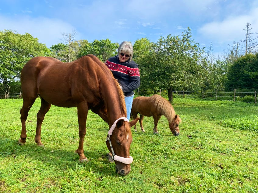Pam Corporon with Ally, the 26-year-old mare she's been reunited with after not having seen her for two decades.CARLA ALLEN • TRI-COUNTY VANGUARD
