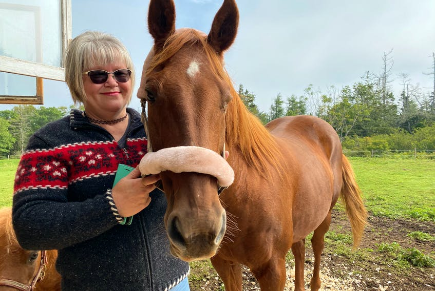 Pam Corporon with Ally, the 26-year-old mare she's been reunited with after not having seen her for almost two decades. CARLA ALLEN • TRI-COUNTY VANGUARD