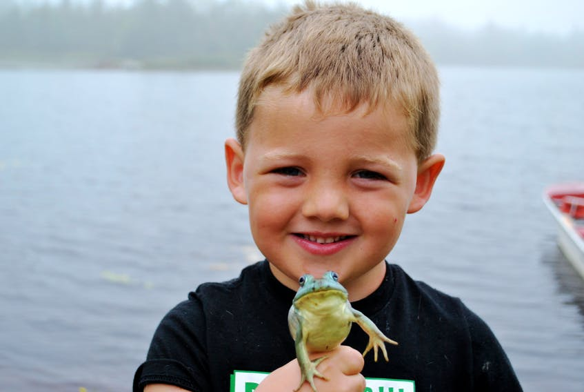 Four year old Jace Nickerson proudly holds up the rare blue/green frog he netted while frog hunting in Beaverdam Lake, Shelburne County on Aug. 21. KATHY JOHNSON