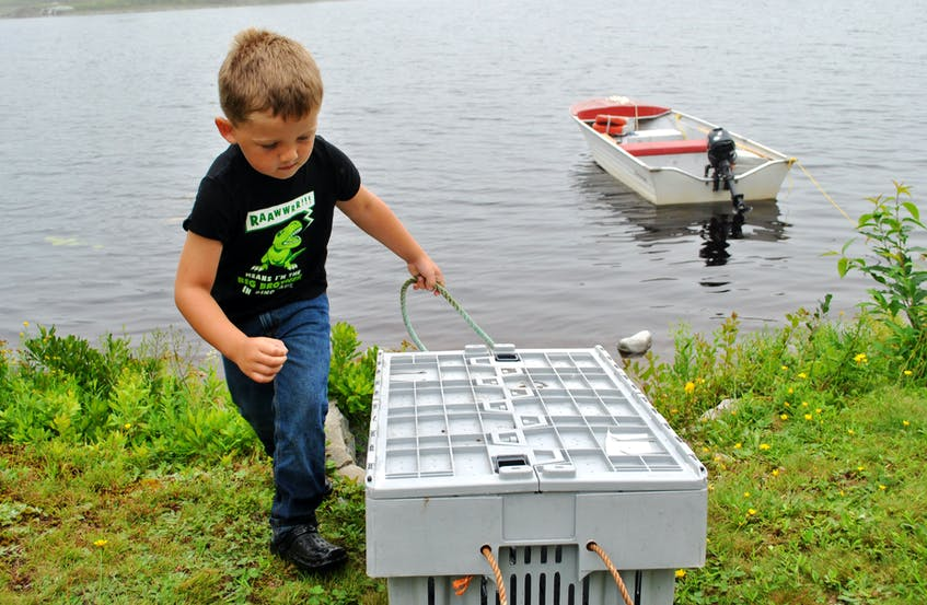 Four year old Jace Nickerson gets ready to move his frog storage crate back to the edge of Beaverdam Lake. Nickerson caught a rare blue/green frog while frog hunting with his stepdad Marcus Devine on Aug. 21. The frog was released. KATHY JOHNSON - Kathy Johnson