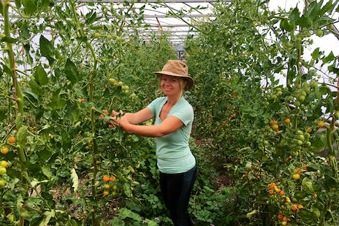Estelle Levangie tends to tomato plants in the Thyme for Ewe greenhouse. The Cape Breton farmer says there's a disconnect between the public, crop seasons and farming.