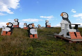I have never seen a puffin.  When I do, I know it will look just like these.  Gary Mitchell says The Puffin Colony in Elliston, N.L., is a popular destination to view these colourful birds. The theme throughout the community features puffins. One crafty shop owner has these unique lawn chairs for sale next to his shop.  Thanks again for sharing a little piece of the Rock with us, Gary.