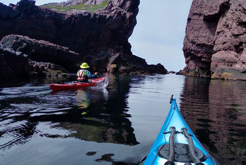 From learning to row programs to sea kayaking adventures, water sports like kayaking are soaring in popularity lately. Paddle NL has seen a significant increase in members since the pandemic, says president Cathy Carroll.