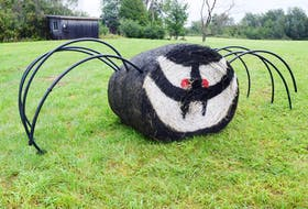A spider is the latest addition to the hay bale art in Durham.