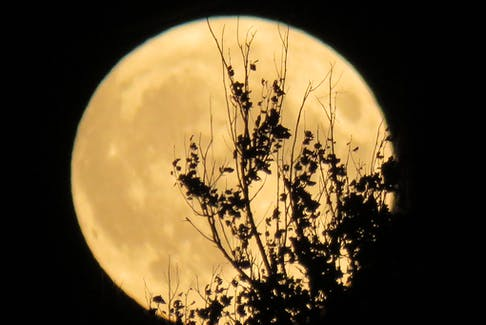 Corinne Reid snapped this gorgeous photo just over two years ago. The September full moon in 2019 was also a Summer Harvest Moon.