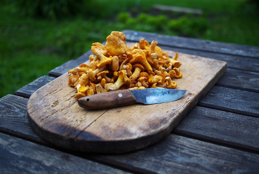 Wild chanterelle mushrooms are praised by local gourmands for their distinctively fruity taste.