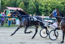 Johnnie Jack, number five, captured the afternoon feature race at Northside Downs on Saturday in a time of 1:56.4 over Southwind Ricardo. Above, winning driver Ryan Campbell is obscured by the head of the second place horse as he earned his fifth driving win of the afternoon. TANYA ROMEO PHOTO
