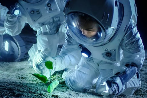 A lunar night is about minus 200 degrees Celsius and lasts for two weeks, which is challenging for plants to survive, says Dr. Thomas Graham. (Artistic interpretation of astronaut tending to a plant.)