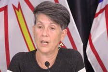 Acting chief medical officer of health Dr. Rosann Seviour updates reporters Wednesday on an outbreak in the community of Baie Verte. (Image from YouTube)