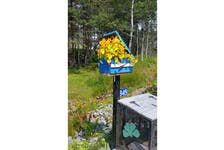 This vibrant mailbox brightens up the roadside in Grande Greve on Cape Breton Island. Perhaps Cyndy Sampson's nasturtiums are thriving on the legacy of handwritten letters.