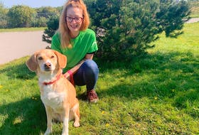 """Bhreagh MacLeod, an animal-care attendant at the Nova Scotia SPCA's Cape Breton branch, poses with Abby, a 10-year-old beagle mix, Wednesday. Despite reports of the so-called """"great doggy dump"""" in the U.S., that's not the case at the Nova Scotia SPCA's Sydney shelter. Chris Connors/Cape Breton Post"""