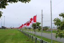 Two of 15 poles missing Flags of Remembrance along Stable Street at Open Hearth Park in Sydney. According to Gerry McCarron, project director for Harbourside Commercial Park, two of the flags featured fallen soldiers and may or may not be repairable.  IAN NATHANSON • CAPE BRETON POST